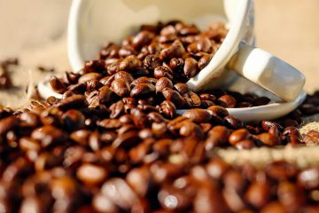 Najvažnije vrste kave