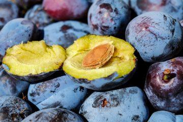 Šljiva – slatka riznica zdravlja