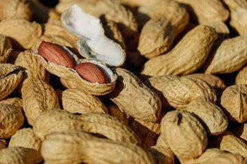 Kikiriki – mahunarka kao idealan sastojak za kolače
