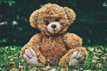 Čokoladni medvjed na dar kraljevskoj bebi