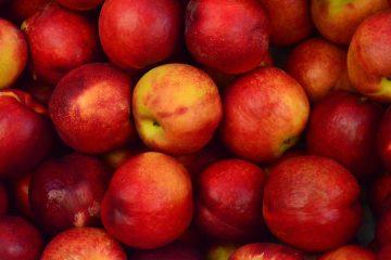 Unatoč rastu proizvodnje, značajno se smanjio izvoz domaćih jabuka
