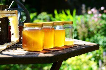Slatki okusi Istre: istarskom medu nacionalna oznaka izvornosti