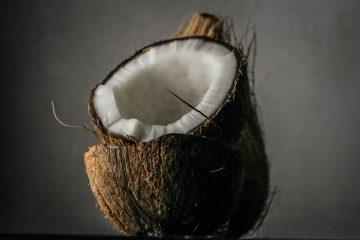 Od sladoleda do torte – kokos lako nađe mjesto u slasticama